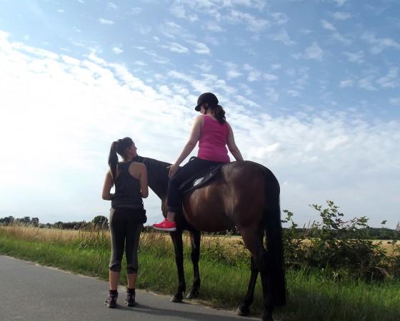 Pferdegestützte Intervention