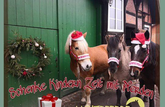 Ich schenke Kindern Zeit mit Pferden